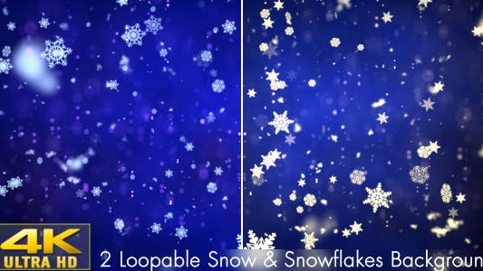 Cover Image for Snow and Snowflakes 3