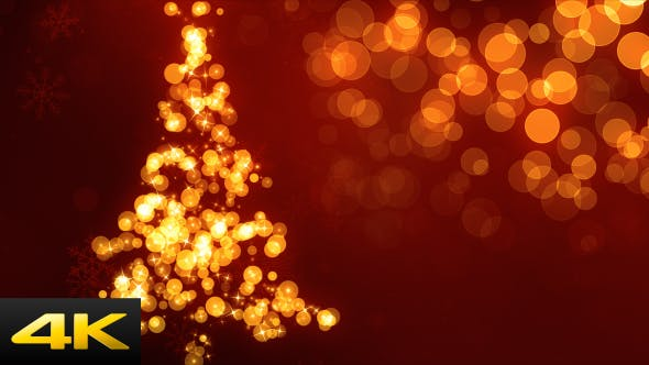 Thumbnail for Christmas Tree Bokeh