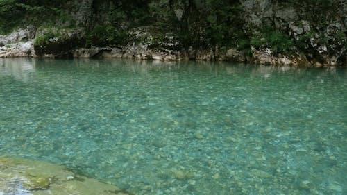 The Tara River And Canyon