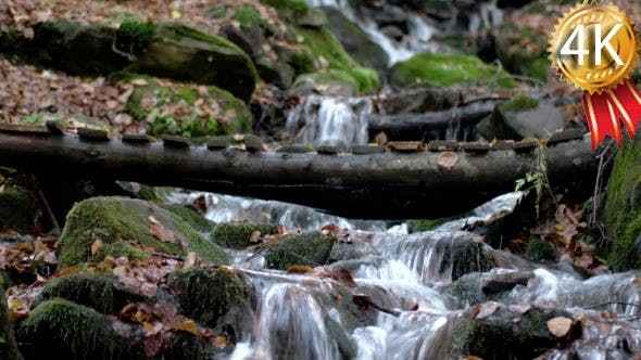 Thumbnail for a Waterfall in the Mountains Autumn Forest With