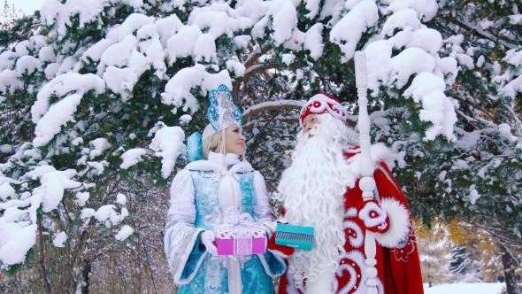 Thumbnail for Father Frost and Snow Maiden Smiling To Each Other