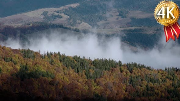 Thumbnail for Autumn Morning Foggy Mist Rising Over Pine and