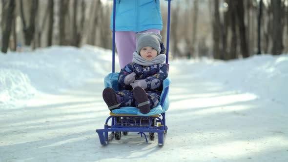 Junge Mutter geht auf einem verschneiten Park mit Schlitten, auf dem ihre kleine Tochter sitzt