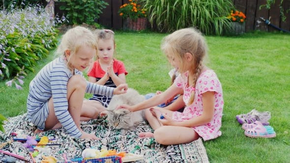 Thumbnail for Carefree Children Play with the Cat in the Yard.
