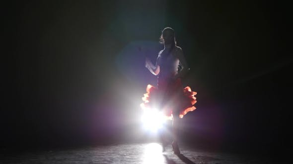 Thumbnail for Lady Dancing Rumba in the Studio on a Dark Background, Smoke, Silhouette