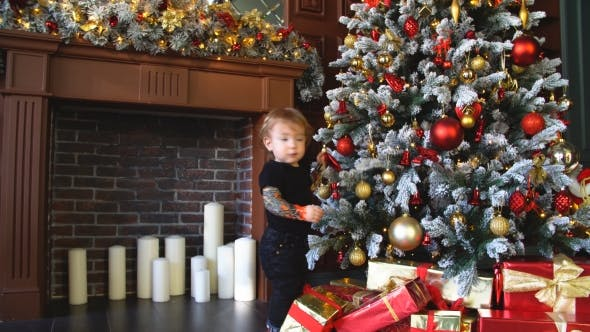 Thumbnail for Little Boy Touches Toy On Christmas Tree.