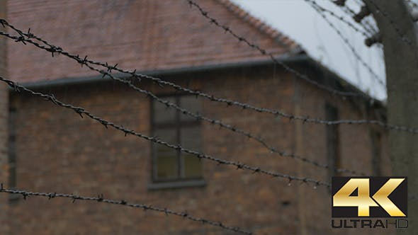 Thumbnail for Barbed Wire on Electric Fence