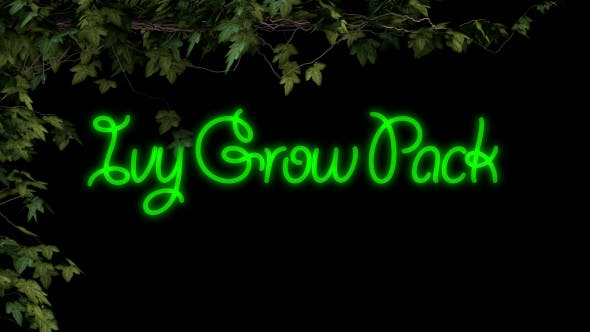 Thumbnail for Ivy Grow Pack
