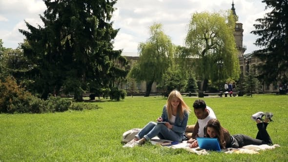 Thumbnail for Interracial Group of Students Studying Outdoors.