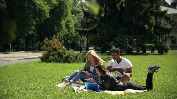 Thumbnail for Group of Diverse Students Studying Outside Campus.