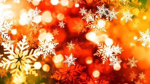 Colorful Christmas Snowflakes