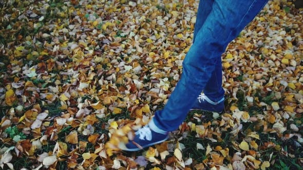 Thumbnail for Man Legs in the Jeans Boots Walking on the Autumn Leaves in the Park