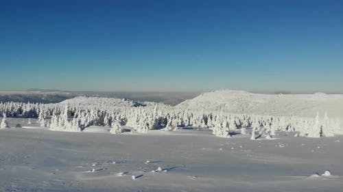 Aerial View of Snowcapped Mountain Peak in Winter