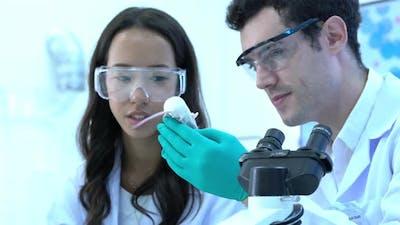 Scientist observing behavior experiment animal