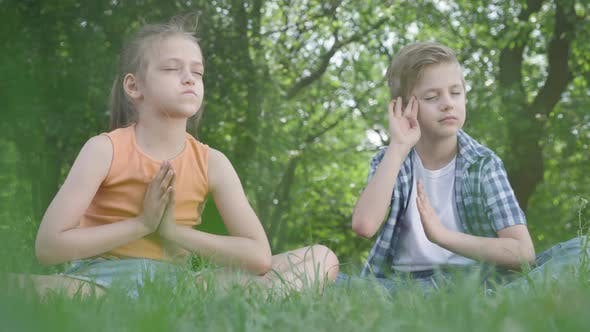 Thumbnail for Portrait Pretty Adorable Little Girl and the Handsome Boy Sitting on the Grass Meditating. Children