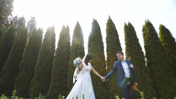 Thumbnail for Wedding Walk