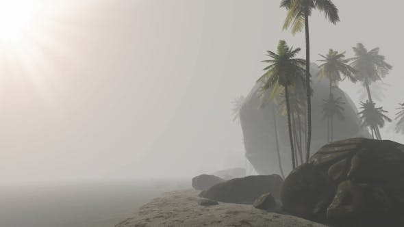 Thumbnail for Morning Fog and Tropical Island with Palms