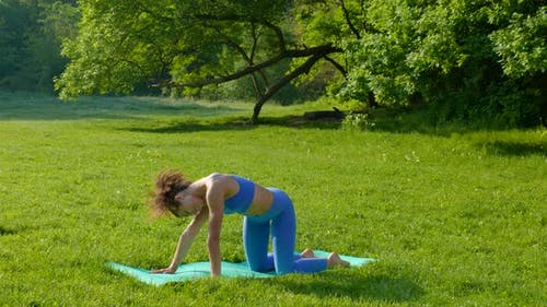 Young Beautiful Girl Doing Fitness Workout on the Grass in the Park