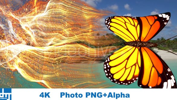 Yellow Butterfly  Particle Trailing Flying Transtion V1