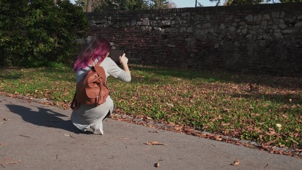Thumbnail for Young Woman Photographing Little Squirrel in Park