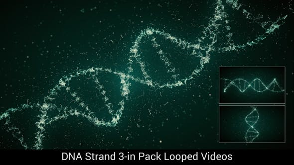 Thumbnail for DNA Strand 3-in Pack Looped 4K