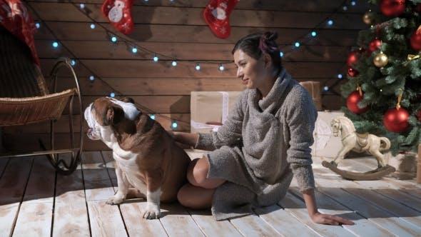 Thumbnail for A Pretty Woman Petting Bulldog at Xmas Eve