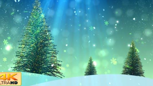 Thumbnail for Christmas Tree 2