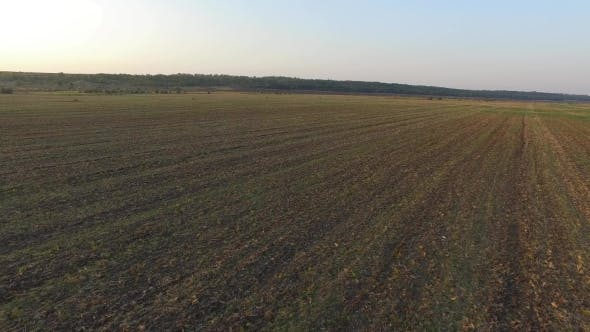 Thumbnail for Ploughed Field. The Nature of the Native Land. Airview