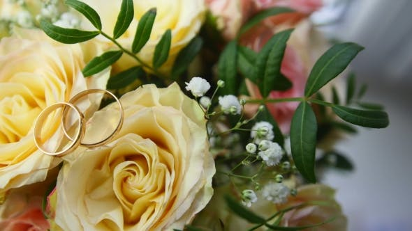 Thumbnail for Wedding Rings on Flowers - Changing Light