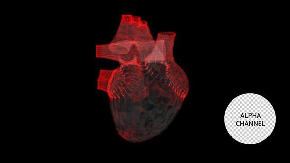 Thumbnail for Rotating Heart