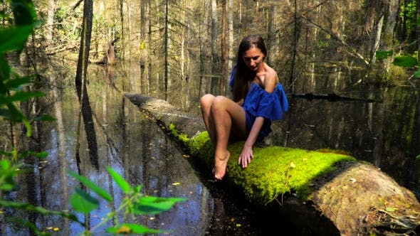 Thumbnail for Girl in a Blue Dress Sitting on a Fallen Tree in the Wilderness