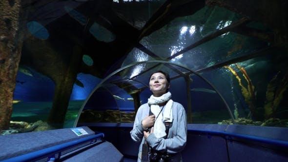 Thumbnail for Frau Blick auf Korallenfisch im Ozeanarium