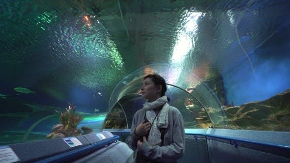 Thumbnail for Asian Woman Tourist in Oceanarium