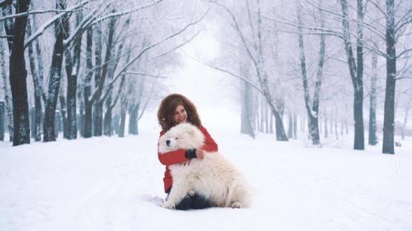 Thumbnail for Young Woman Petting White Samoyed Dog on