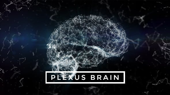 Thumbnail for Plexus Brain Rotation #2