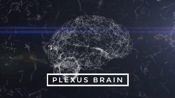 Thumbnail for Plexus Brain Rotation #3