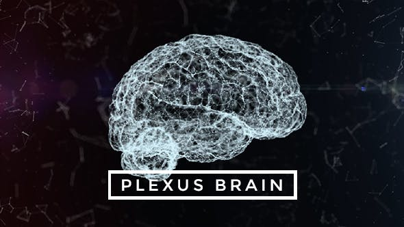 Thumbnail for Plexus Brain Rotation #4