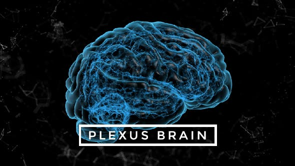 Thumbnail for Plexus Brain Rotation #5