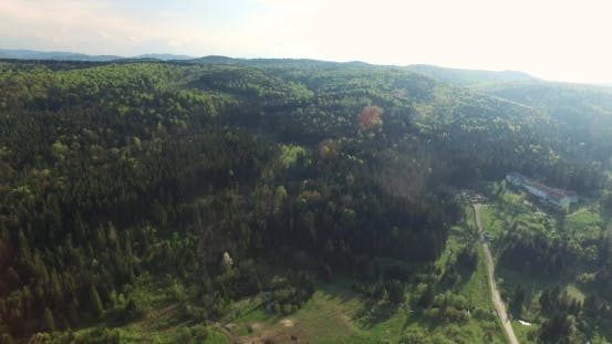 Thumbnail for Aerial View. Panoramic Shot of Forest Road