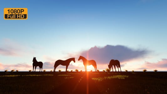 Thumbnail for Horses Silhouette