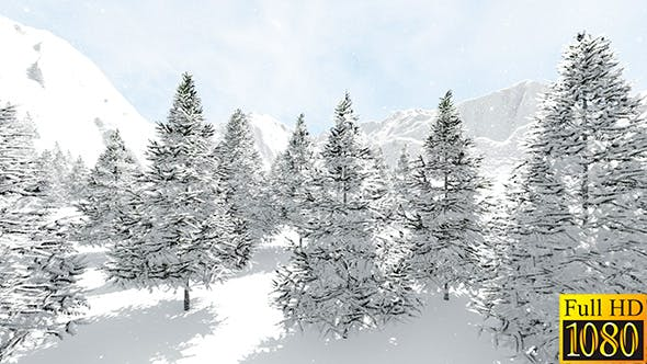 Thumbnail for Snowy Fir Trees