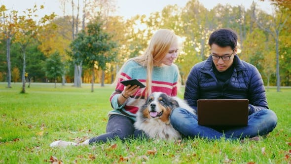 Thumbnail for Interracial Young Couple Resting in a Park with a Dog. Asian Man Uses Laptop, a Woman Enjoy Tablet