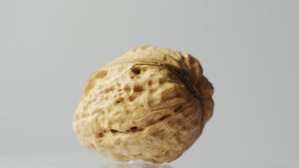 Thumbnail for One Walnut Isolated on White