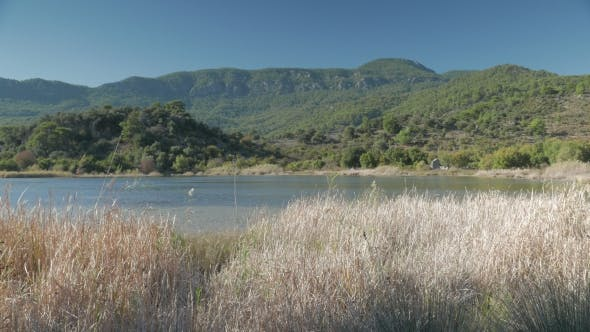 Thumbnail for Dry Grass By the Suluklu Lake with Green Hills and Ancient Wall on the Background, Dalyan, Turkey. .