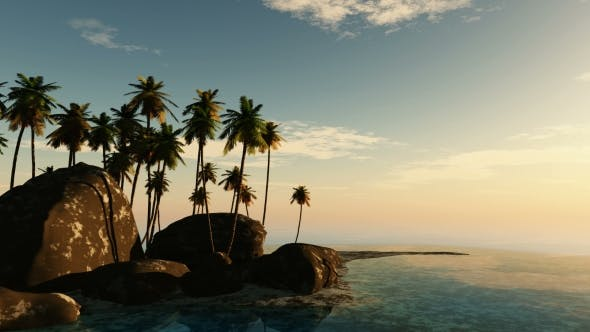 Thumbnail for Tropical Island with Palms