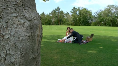 Picnic of the Newlyweds.