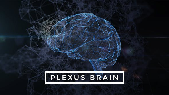 Thumbnail for Plexus Brain Rotation #6