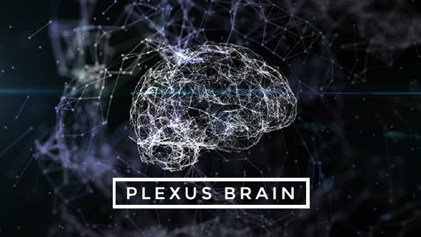 Thumbnail for Plexus Brain Rotation #7