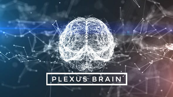 Thumbnail for Plexus Brain Rotation #9