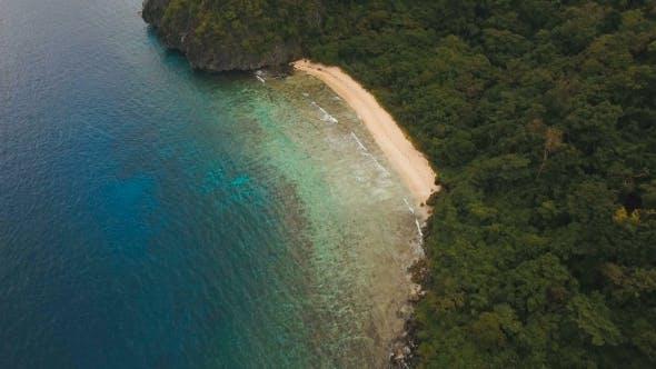 Thumbnail for Tropical Beach, Aerial View. Tropical Island.